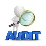 What 1st year audit associates should look for