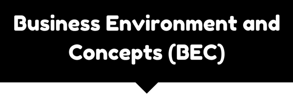 Business Environment and Concepts (BEC)